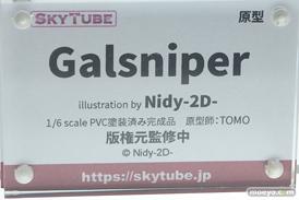 スカイチューブ Galsniper illustration by Nidy-2D- TOMO フィギュア エロ 11