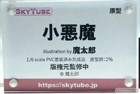 スカイチューブ 小悪魔 illustration by 魔太郎 2% フィギュア エロ キャストオフ 09