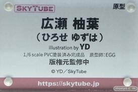 スカイチューブ 広瀬柚葉 illustration by YD EGG フィギュア エロ キャストオフ 10