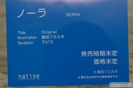 ネイティブ ノーラ 島田フミカネ アビラ フィギュア エロ キャストオフ 14