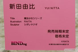 BINDing 魔法少女シリーズ 新田由比 RAITA シダレヤナギ エロ フィギュア ワンダーフェスティバル 2020[冬] 12