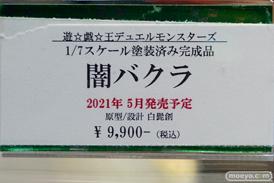 秋葉原の新作フィギュア展示の様子 あみあみ コトブキヤ ボークス ソフマップ  06