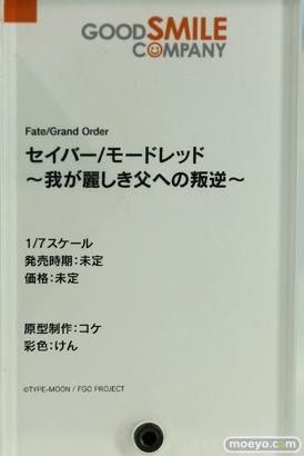 ワンホビ33 FGO 源頼光 メカエリチャン フィギュア 19