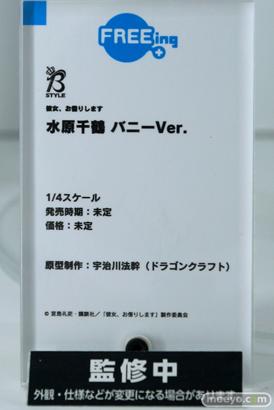 ワンホビ33 フィギュア フリーイング インテリジェントシステム NEKOYOME 23