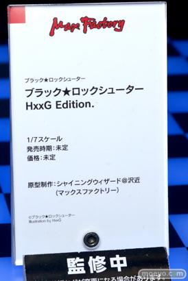 マックスファクトリー ブラック★ロックシューター HxxG Edition. シャイニングウィザード@沢近 フィギュア ワンホビ33 15
